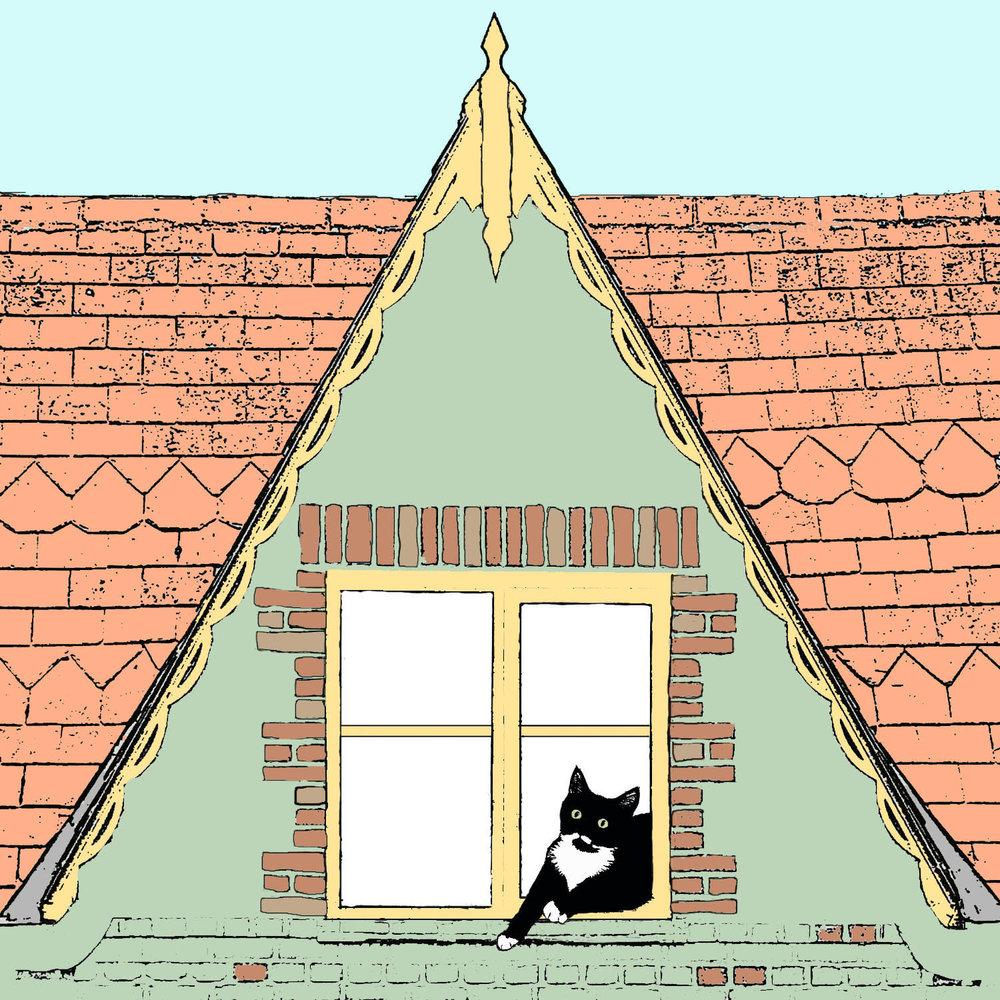 Cat with yellow window
