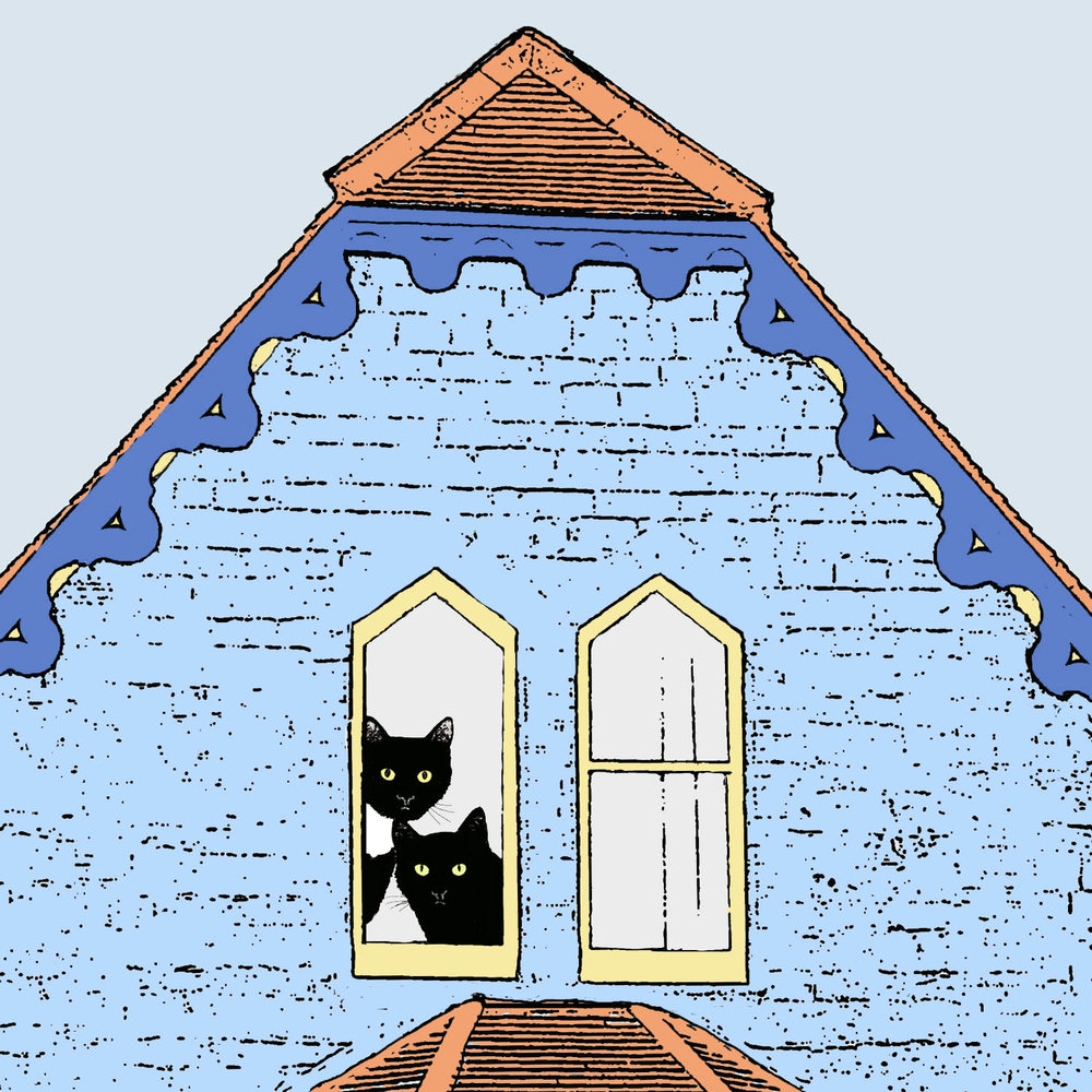 Cats with two windows