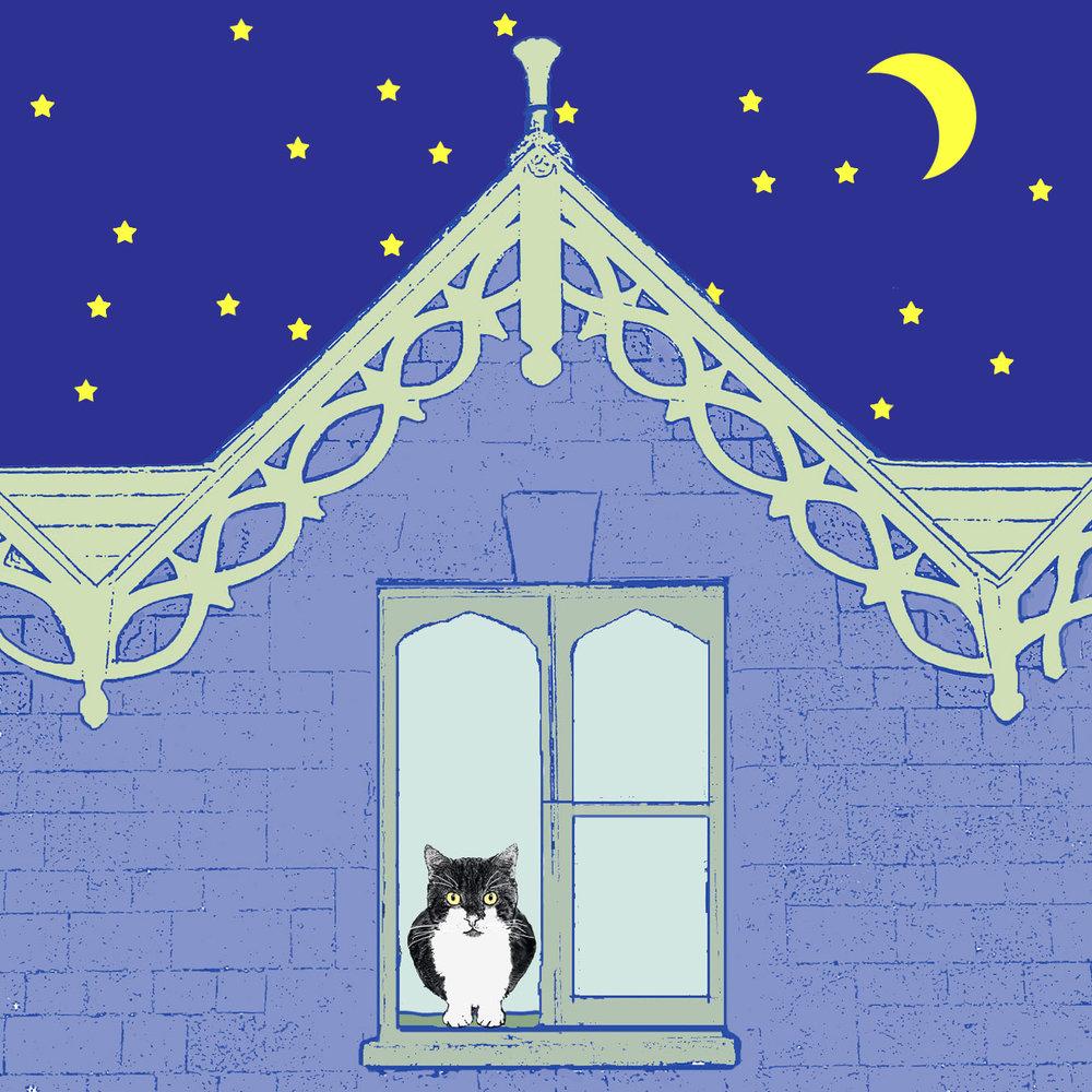 Cat with Stars