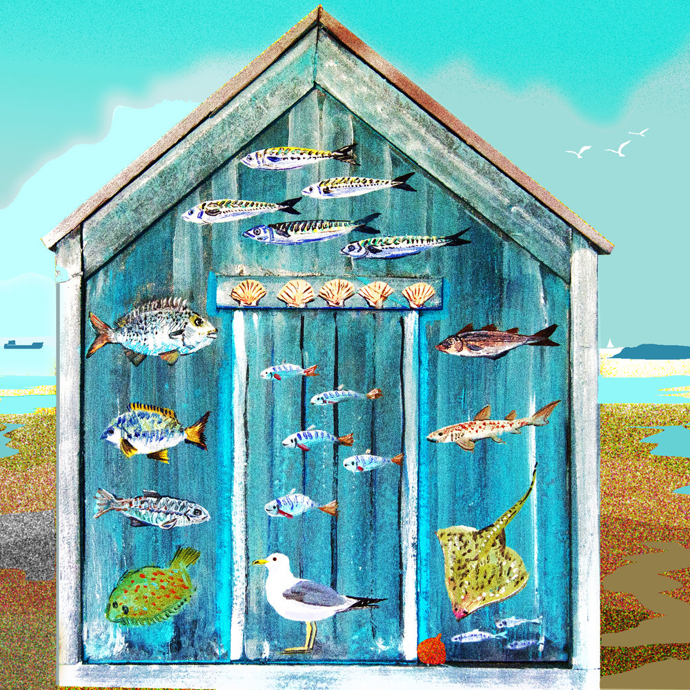 Fishy Shed