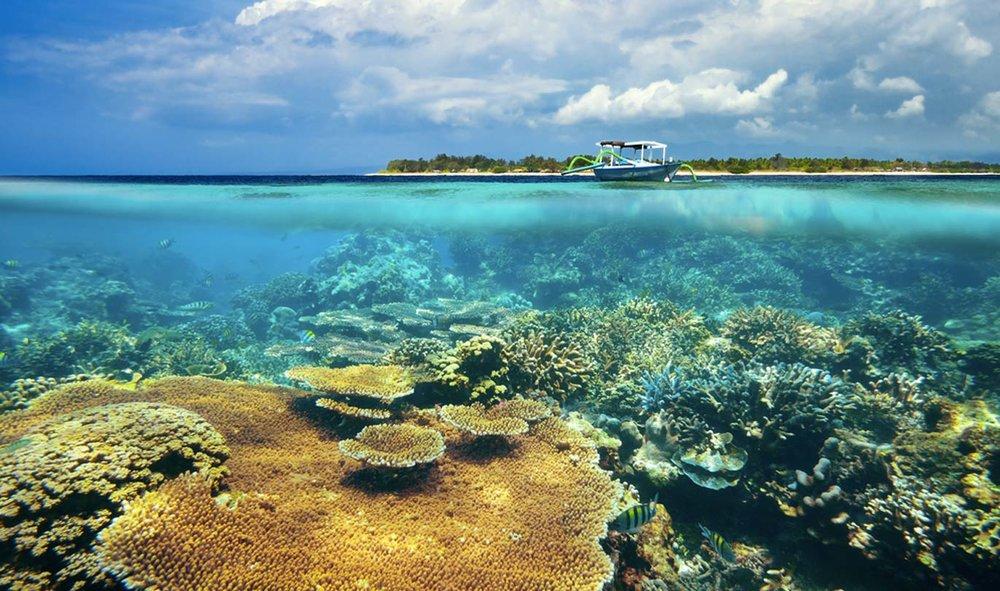 coral_reef_gili_meno.jpg