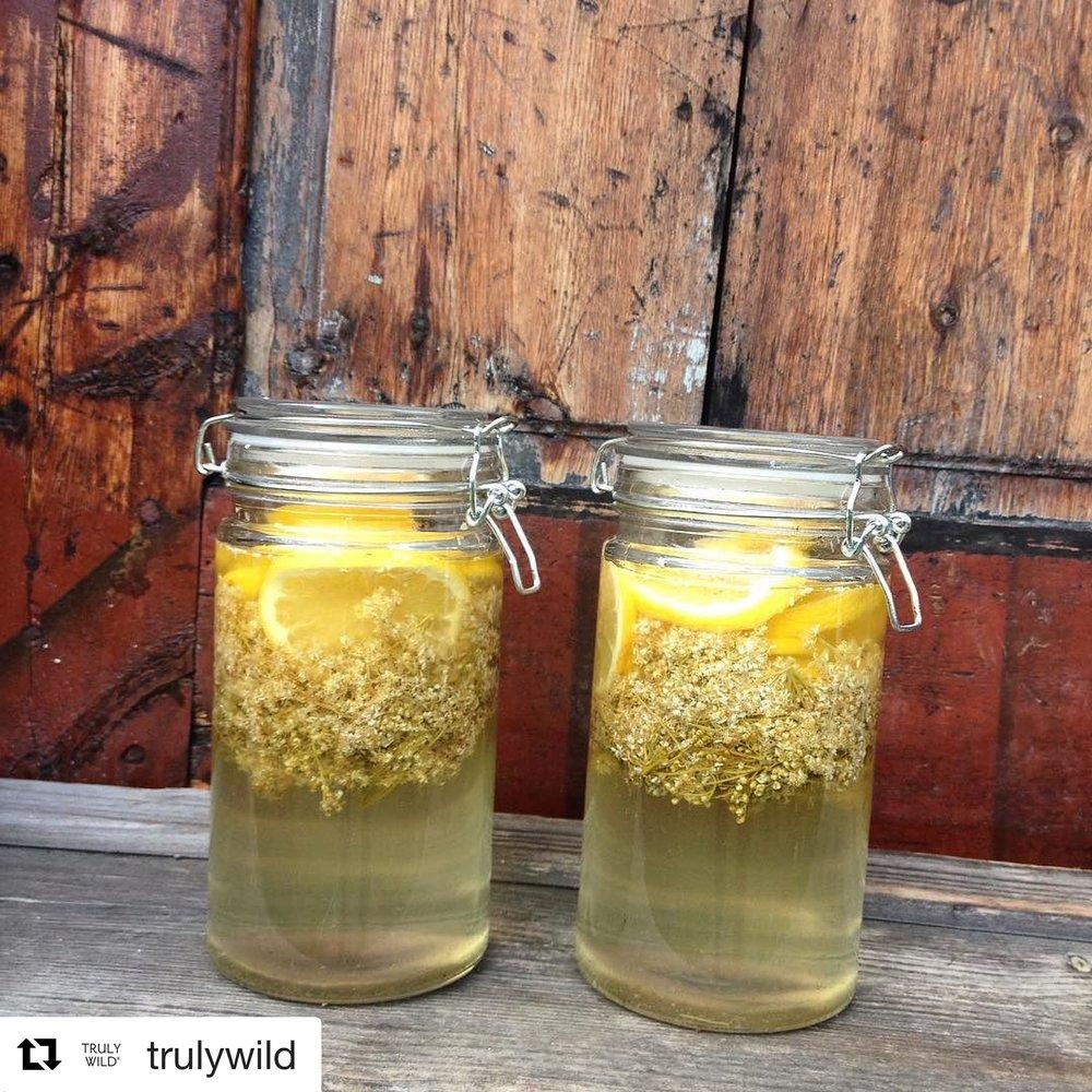 Meadowsweet drink
