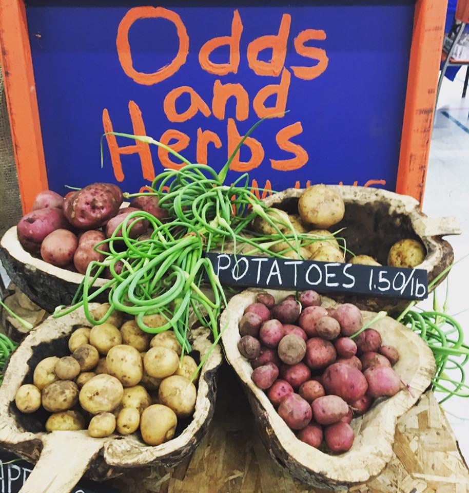 Odds & Herbs 2.jpg
