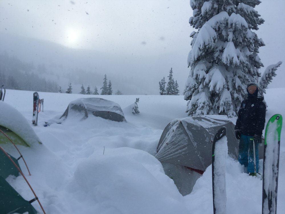 At least 12in of new snow overnight