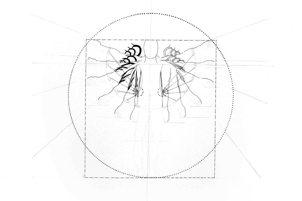 Phase 4 - Hybride - konfrontatives Experiment Autoren:Kim Annik Jacobi &Ines Viola Schlecker