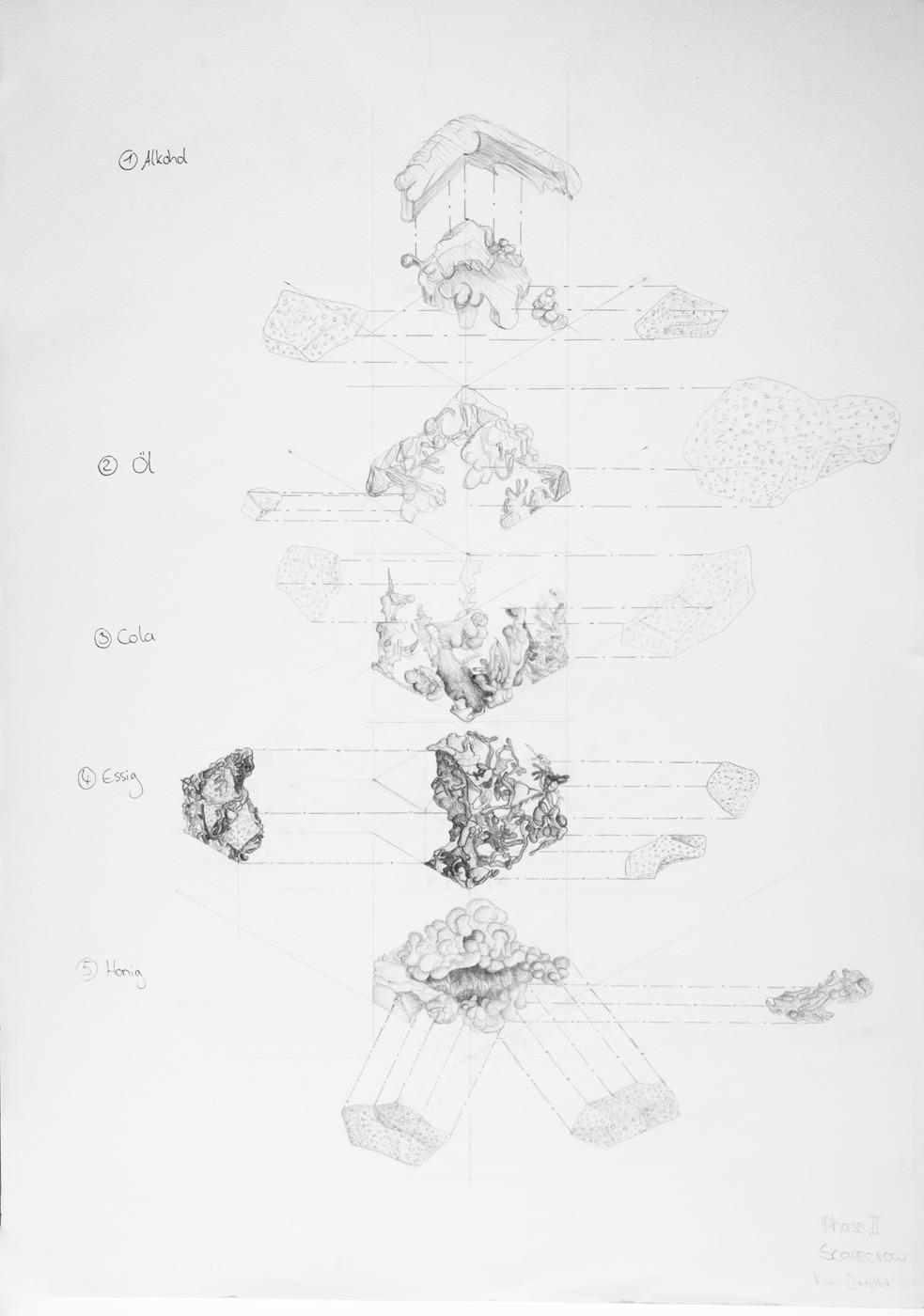 PHASE3_drawings_web_56.jpg
