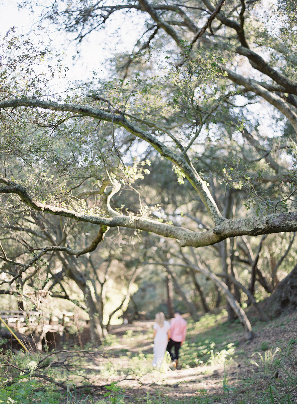 Taylor & Casey's Malibu Engagement-Carrie King Photographer-001.jpg