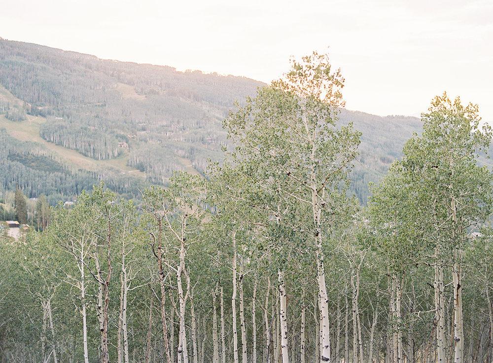Aspen Colorado View on Film