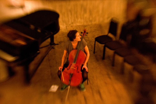 Tara Cello Wiltons.jpg