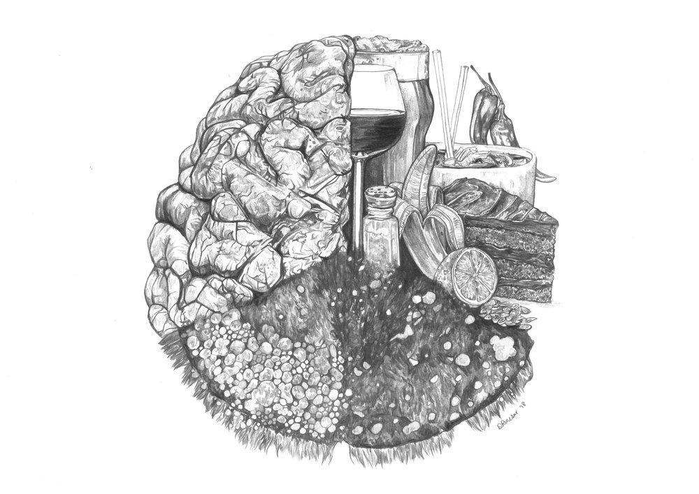Taste, Papillae and the Brain.jpg