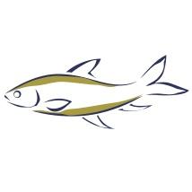 fish .jpg