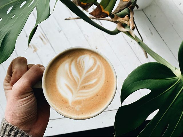 If you haven't already, don't forget to sign up in our bio for The Month Of Self Care emails. 🙌🏼 We will send you one email a week through February dedicated to all things self-care. ❤️ and now back to this lovely latte and rare streaks of sunshine 🌞