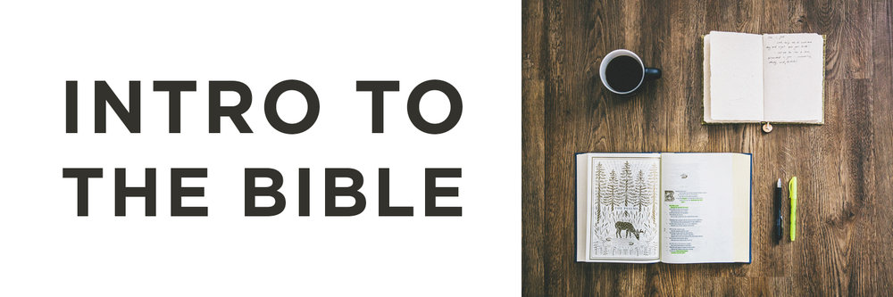 Intro To The Bible Web Banner.jpg