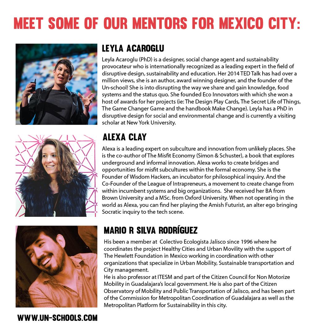 mexico city un-school fellowship mentors