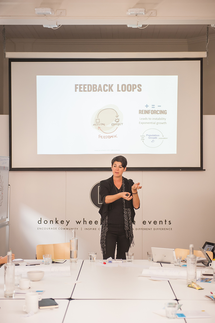 Leyla explains feedback loops and the foundations of a systems thinking approach