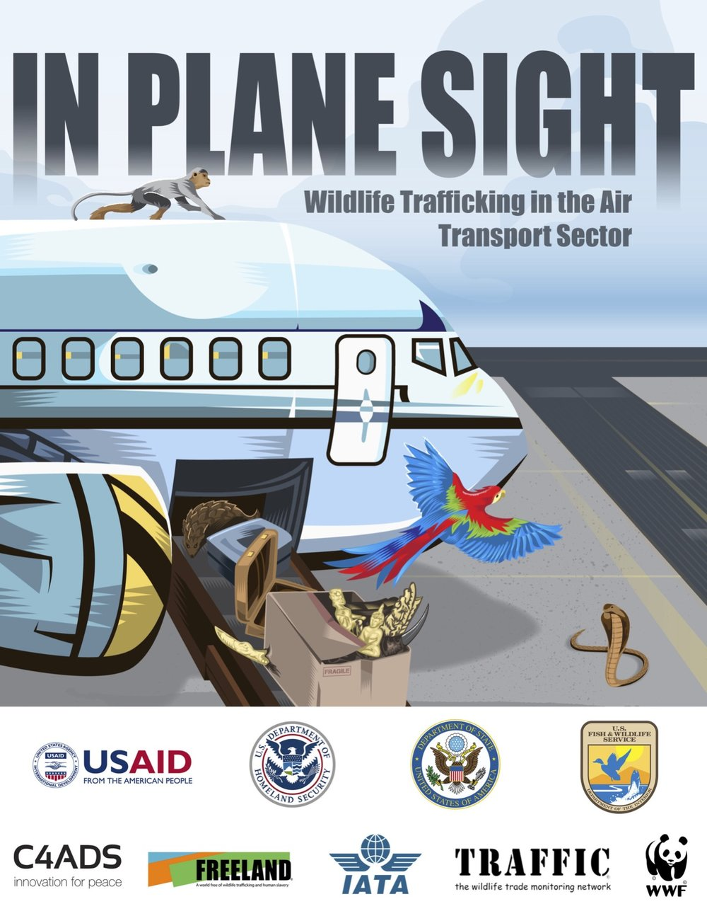In Plane Sight.jpg