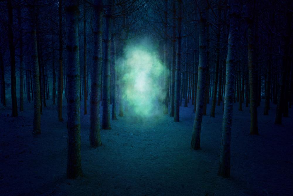 the-woods_Finale.jpg