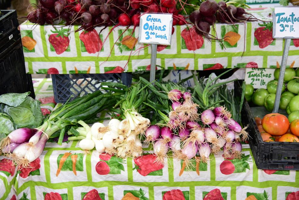 Farmer's Market Asheville