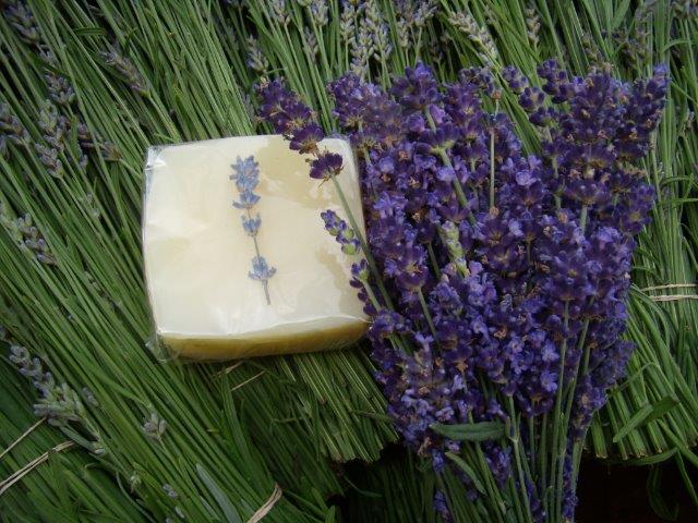 Lavender Lather Soap, made in partnership with Bethany Season's. Ingredients: Distilled water, Olive, Coconut & Palm Oils, Sodium Hydroxide, Essential Oil of Lavender & Grapefruit Seed Extract as a preservative.
