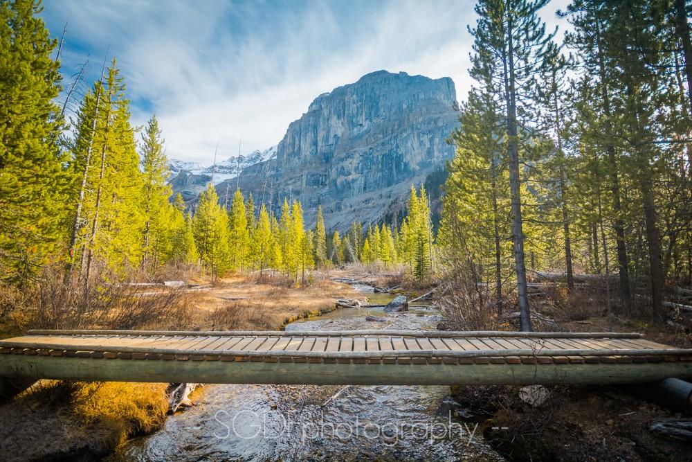 Stanley Creek