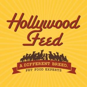 HollywoodFeed.jpg