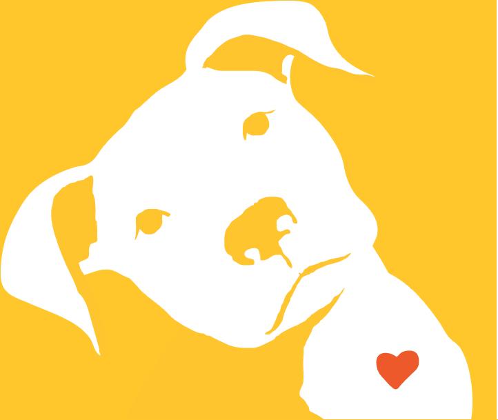 https://www.streetdogfoundation.com/