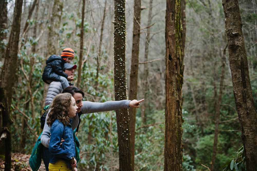 Mother pointing out something in the forest to her daughter