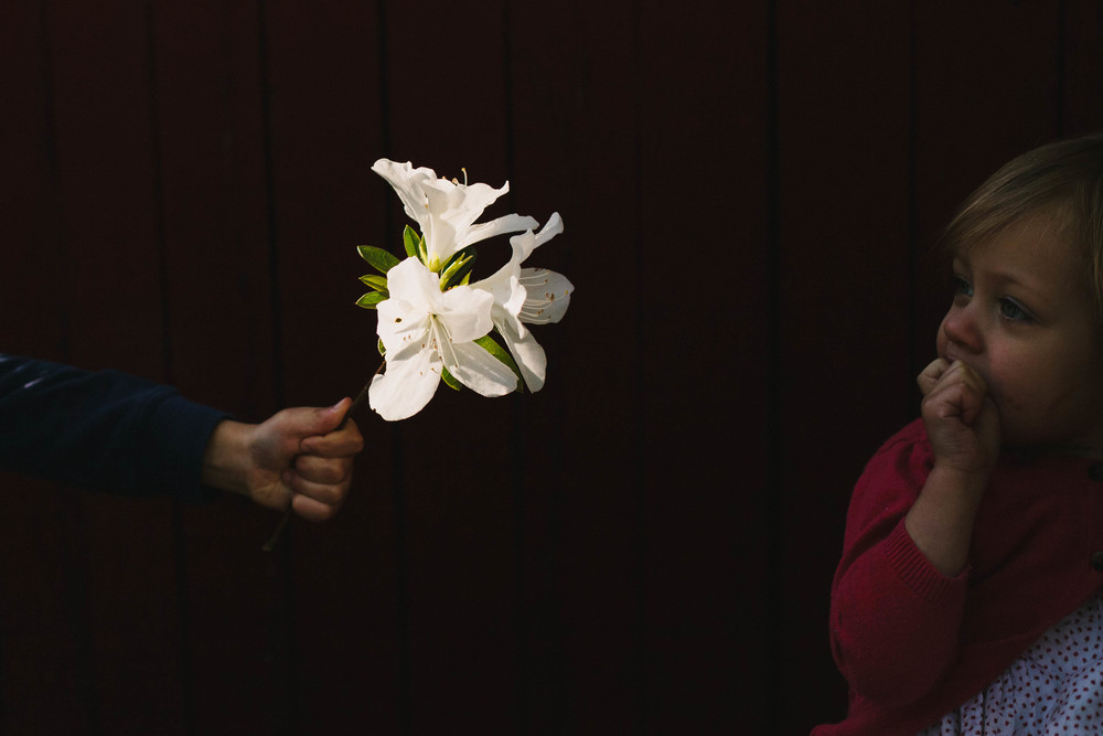 Image from family documentary session of boy giving flower to sister