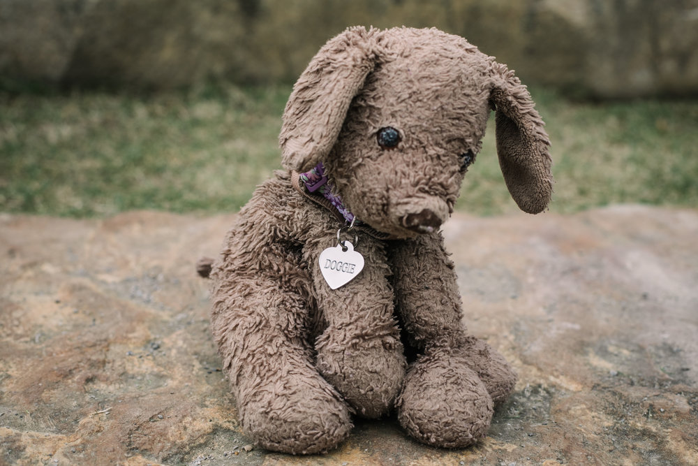a portrait of a stuffed animal