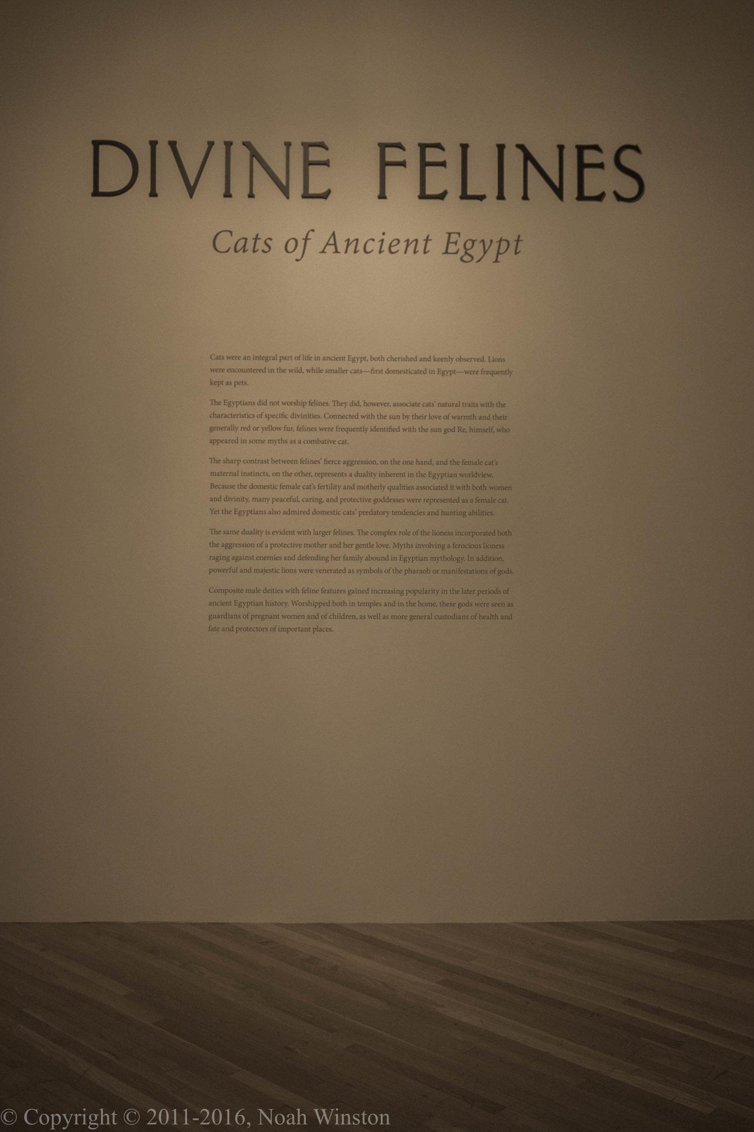 Divine Feline: Cats of Ancient Egypt — Noah Winston