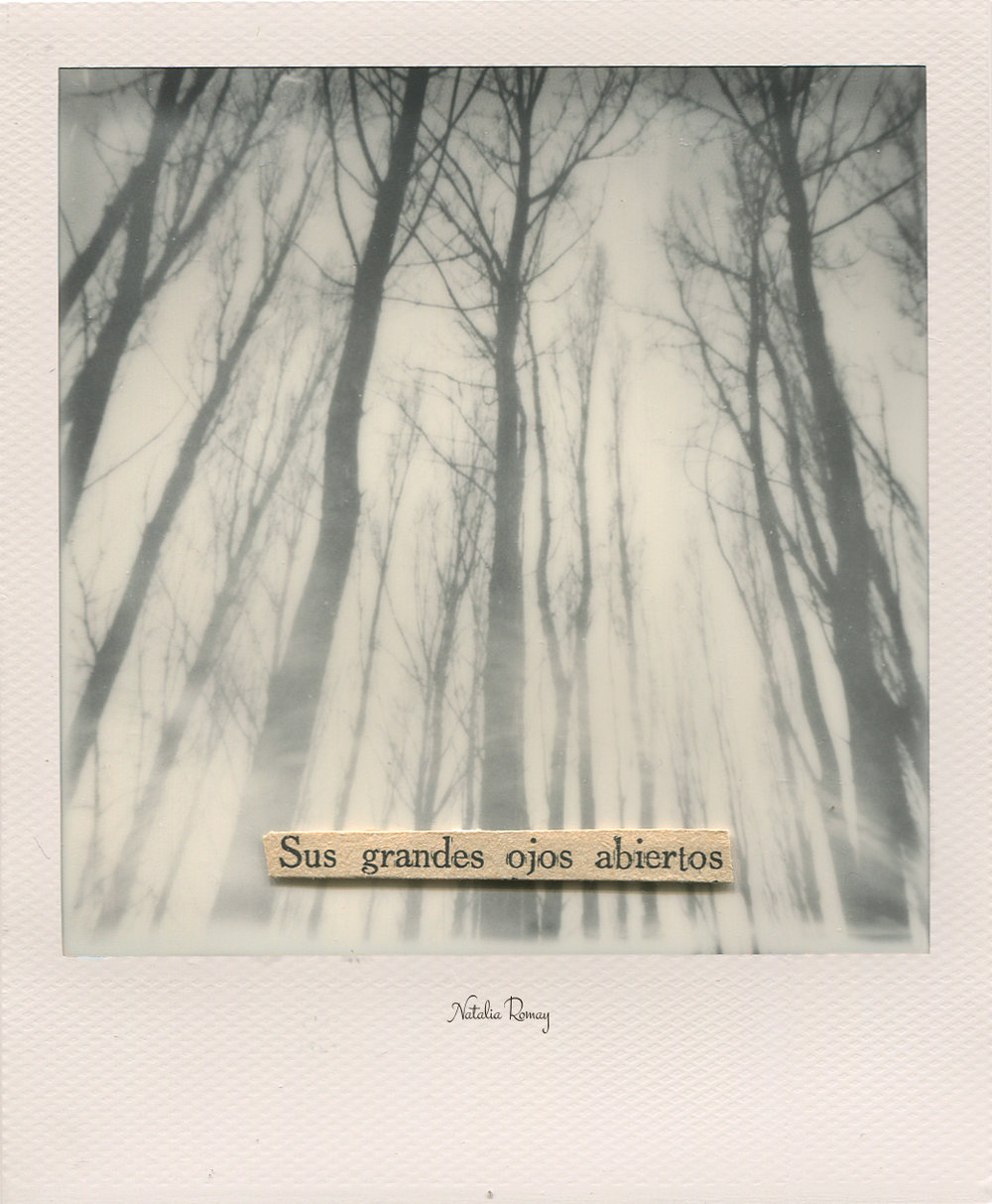 http://polaroidoftheday.com/natalia-romay-a-game-of-chance/