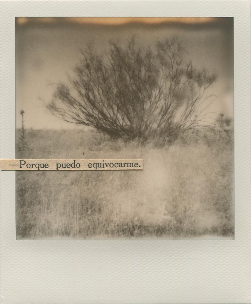 Polaroid 4 - Natalia Romay.jpg
