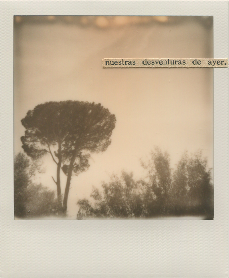 Polaroid 5 -Natalia Romay.jpg