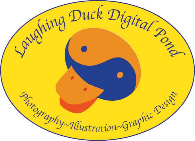 Laughing Duck Digital Pond