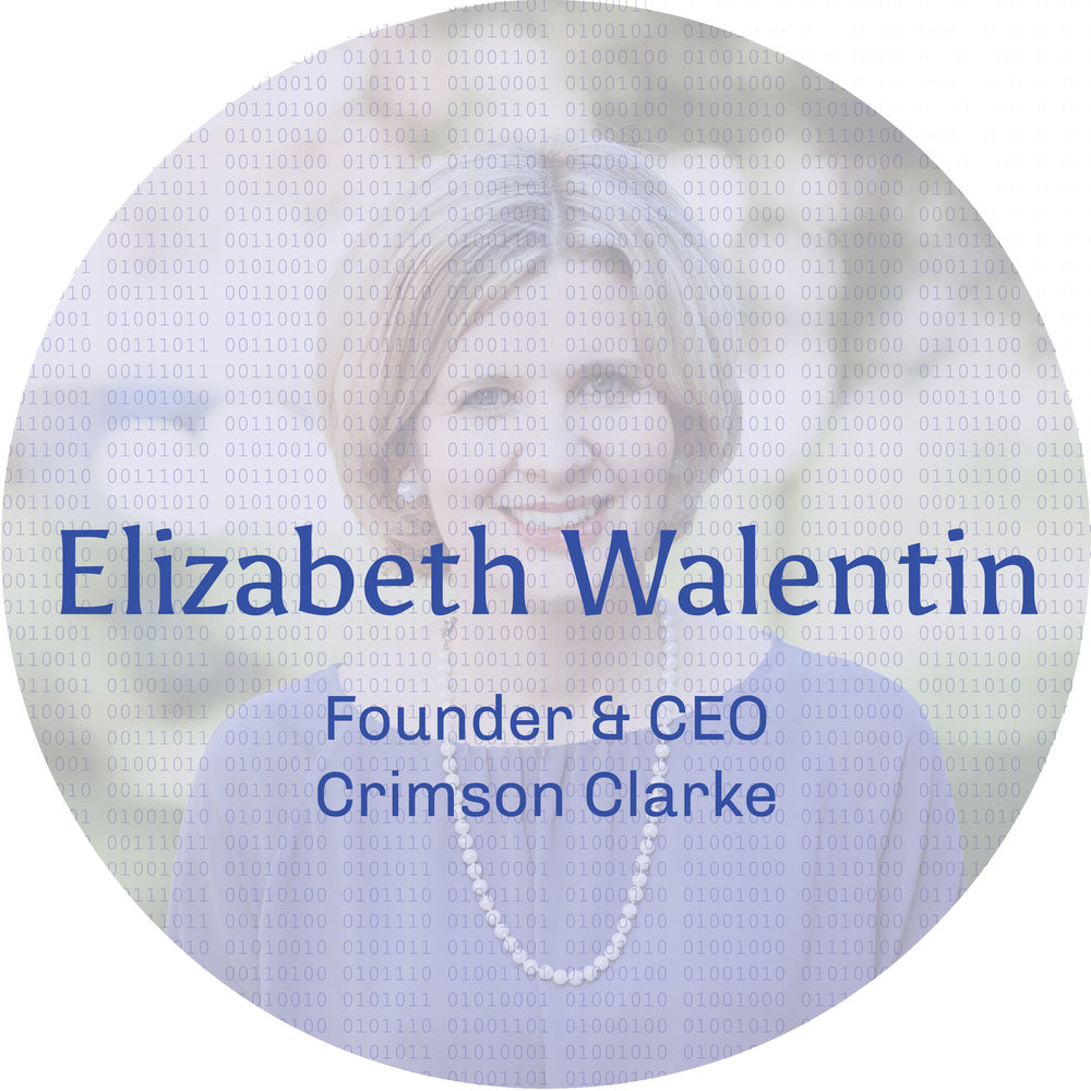 Elizabeth Walentin frosted with zeroes and ones.jpg