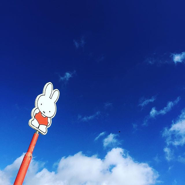 #miffy十二月新款 in the sky with clouds
