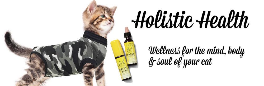 HolisticHealth-cat.jpg