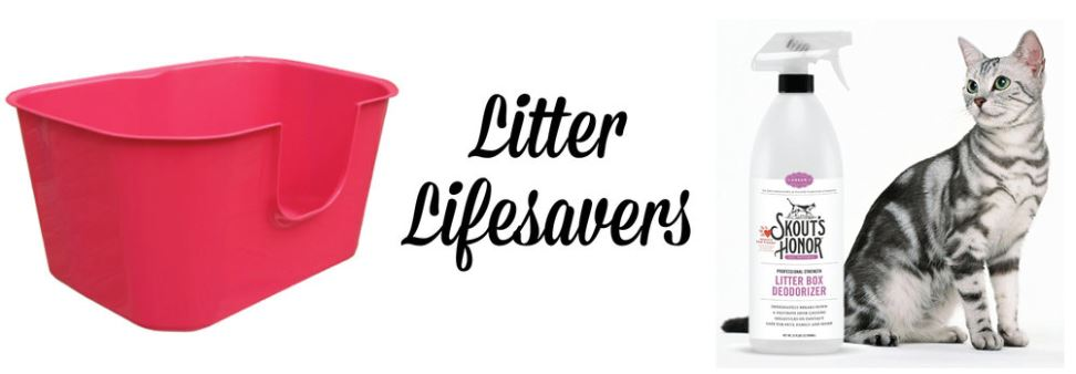 Litter Lifesavers.JPG