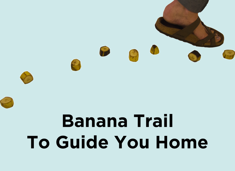 12. Banana Trail To Guide You Home.png
