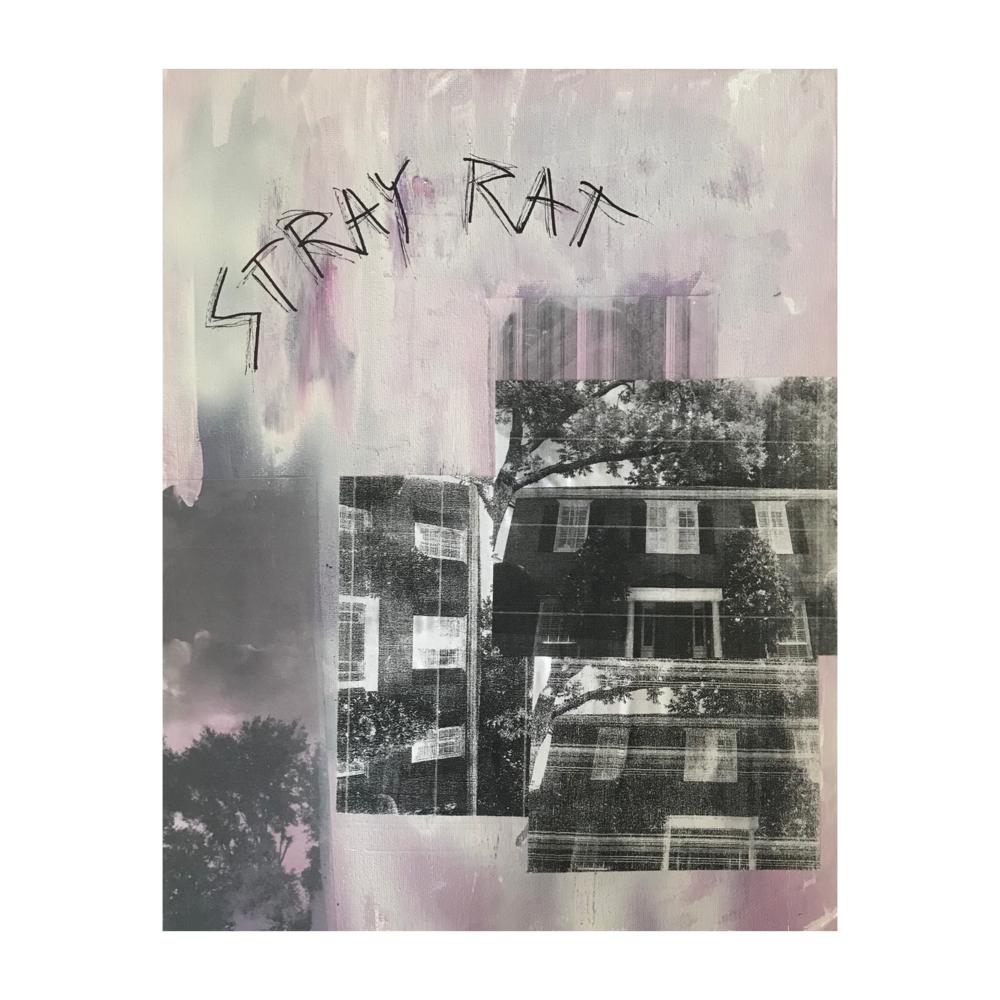 "Stray Rat, 11"" x 14"""