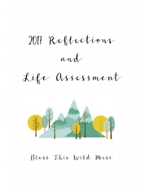 2017 reflections and life assessment cover.jpg
