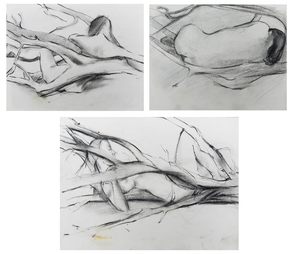"""Teresa Welch, charcoal/paper, each approx. 8"""" x 10"""",  Drawings done in Jeswald class: Drawing and Painting as Expression , 1978"""