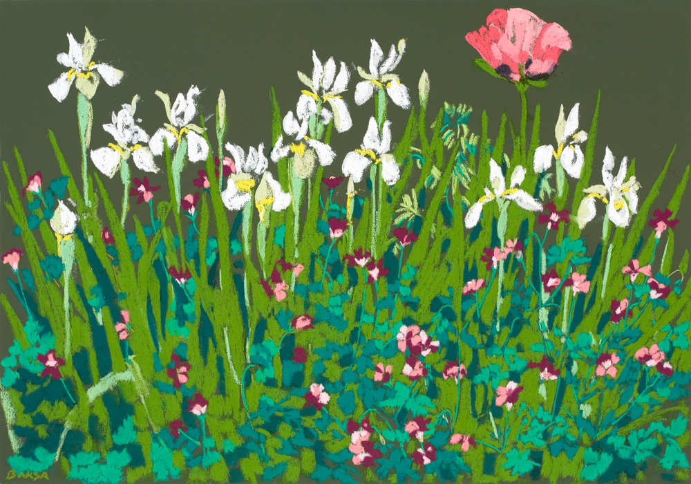 Siberian Irises and Pink Poppy