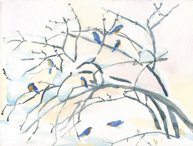 "Teresa Baksa,  Bluebirds in Winter/study,  watercolor and pastel, 8"" x 10"""