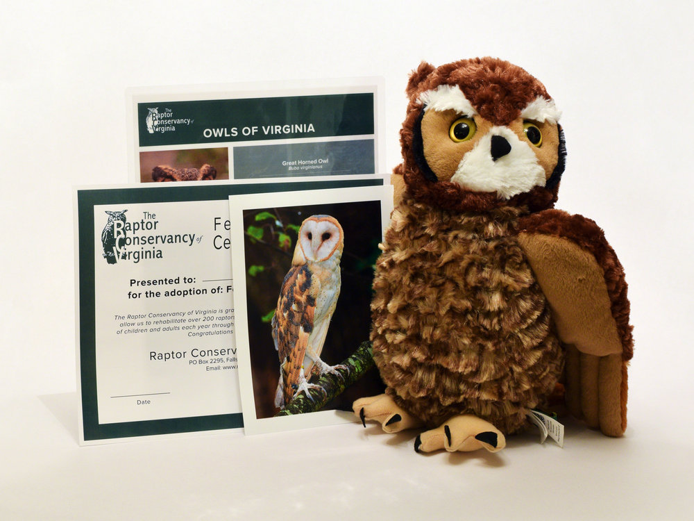 Feathered Friends Adoption Kit - Owl