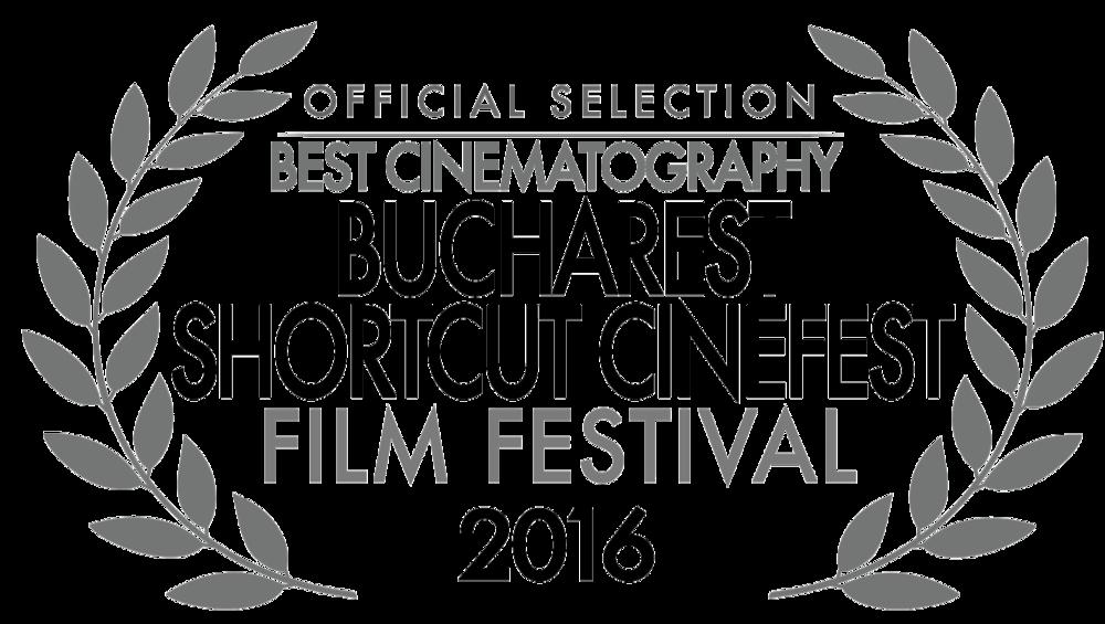 Bucharest Shortcut Cinefest.png