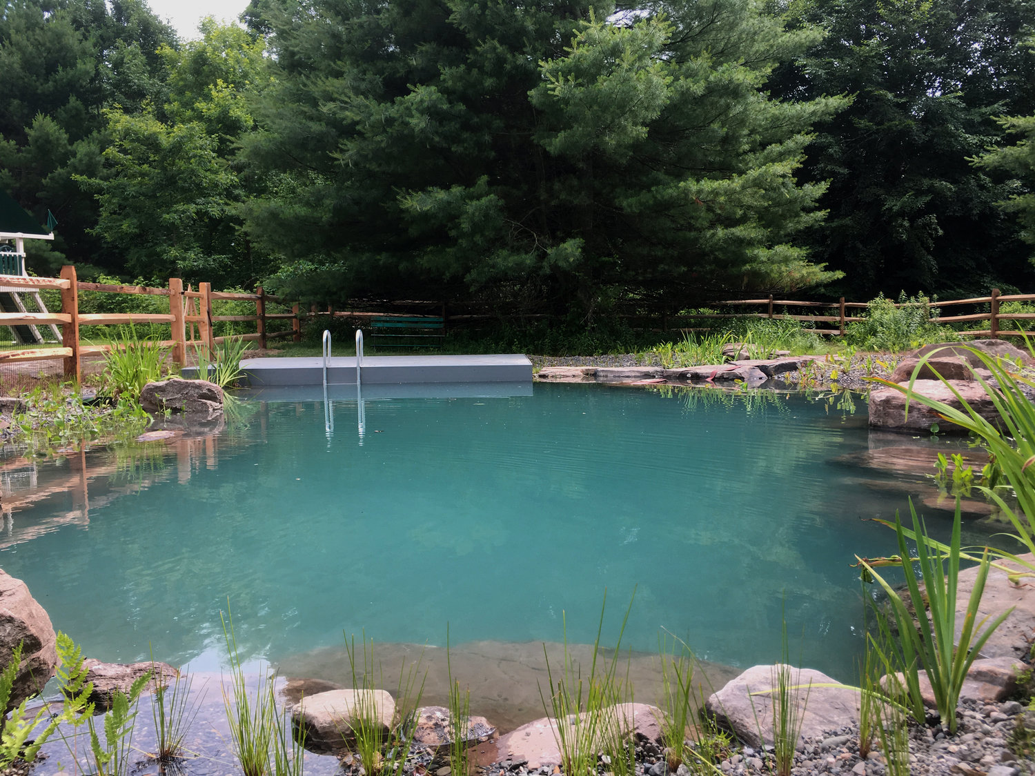 Take a Look at These Awesome Pond Swimming Pool Photos ...