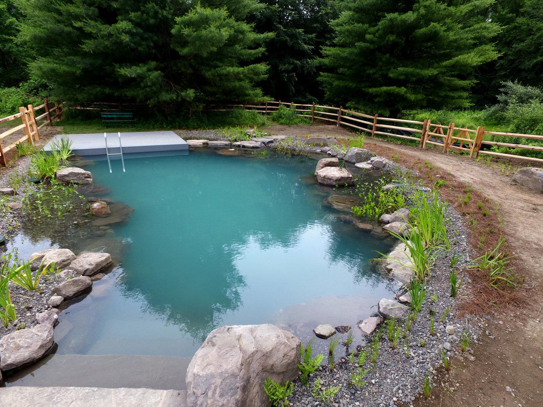 Natural Swimming Pool — PondWorks