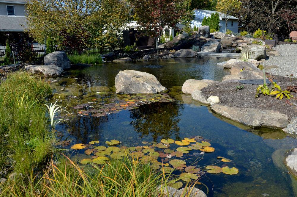 Pondworks_pond_overall_02.jpg