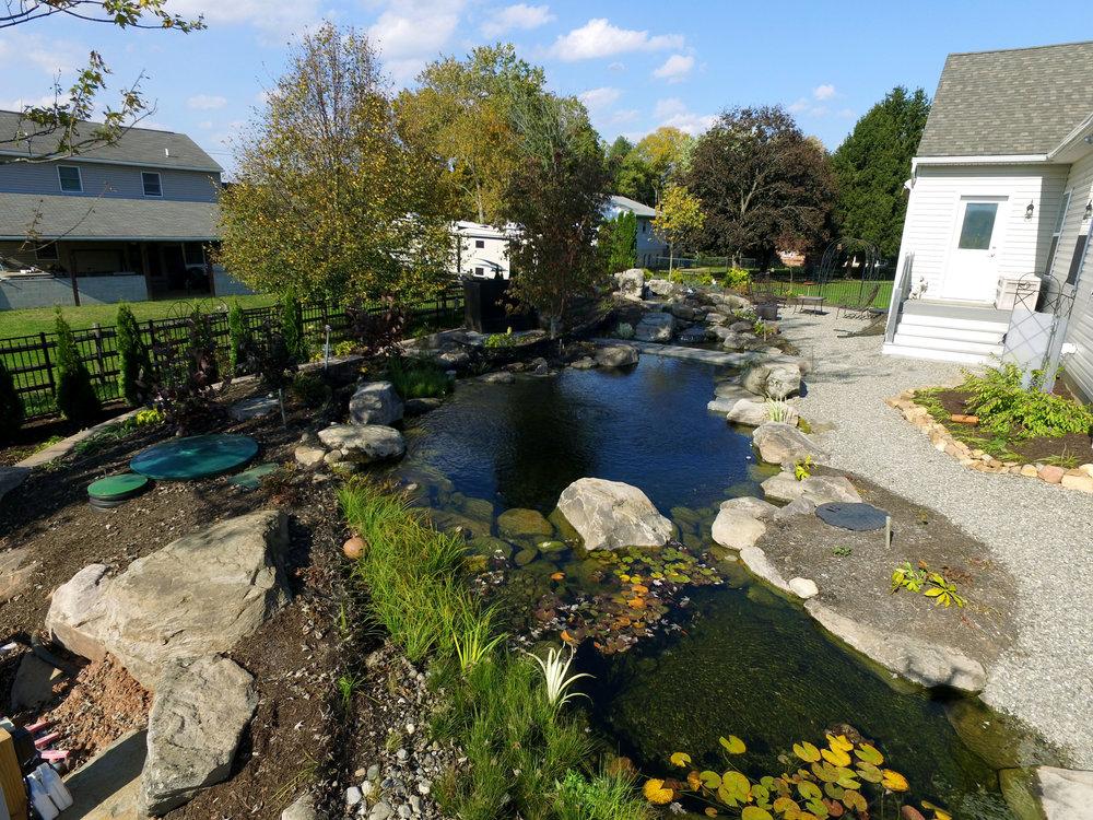 Pondworks_pond_natural_custom.jpg